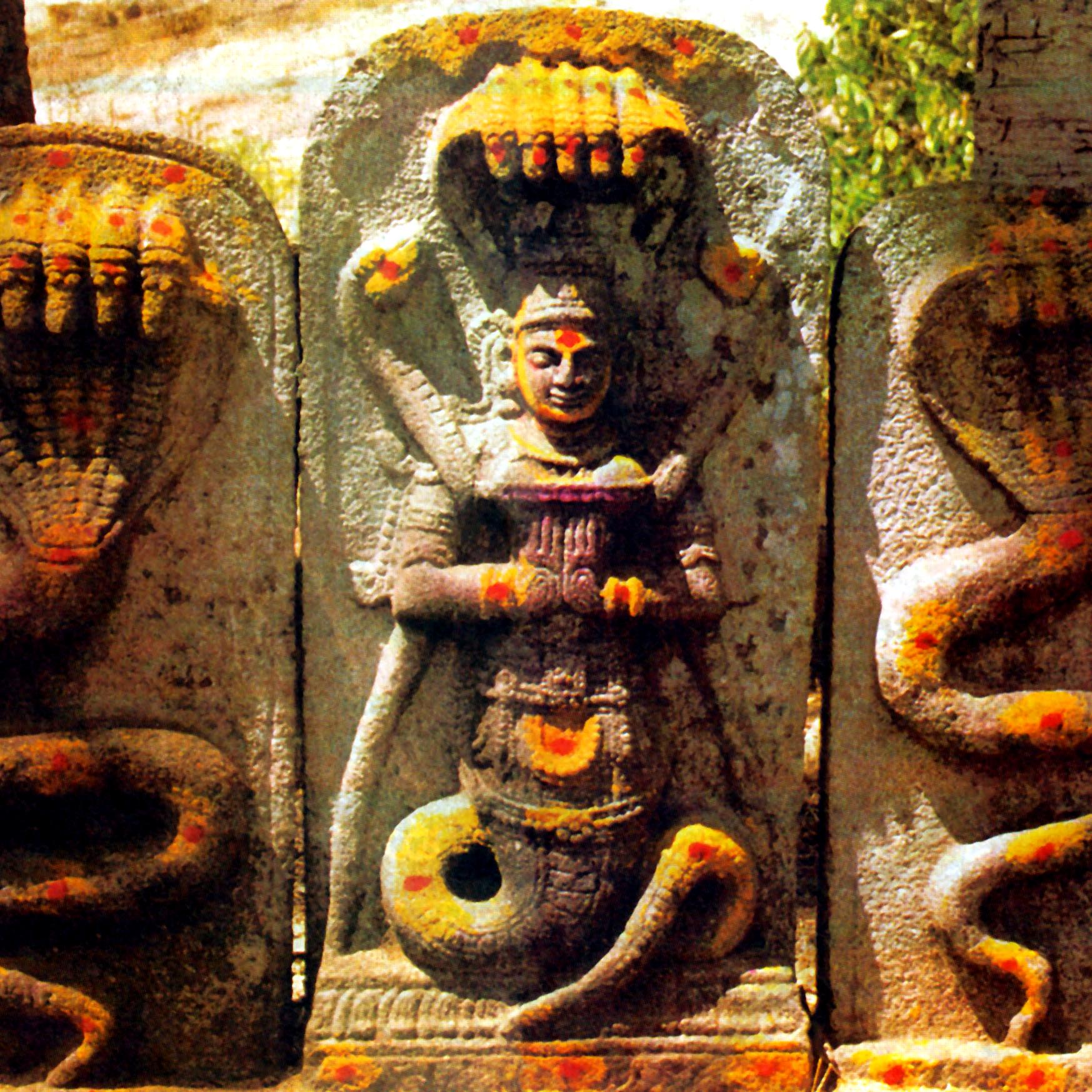 Нага Доша или почему мне не везет в любви? – Шива Шри Гуруккал